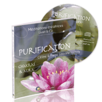 livre-cd-purification-3D-600x840
